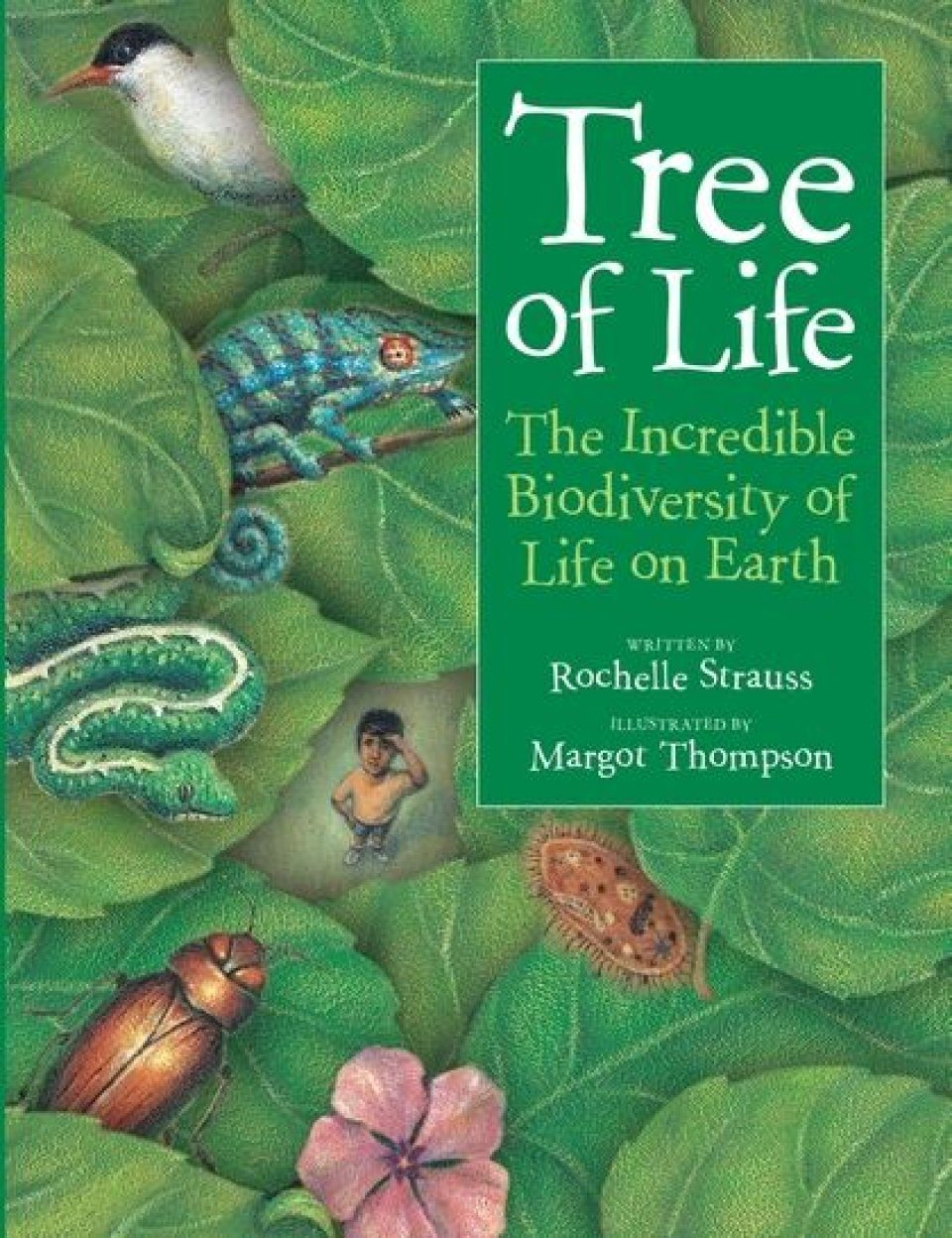 tree of life version review
