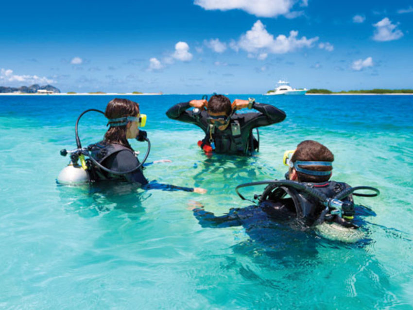padi reactivate quick review answers