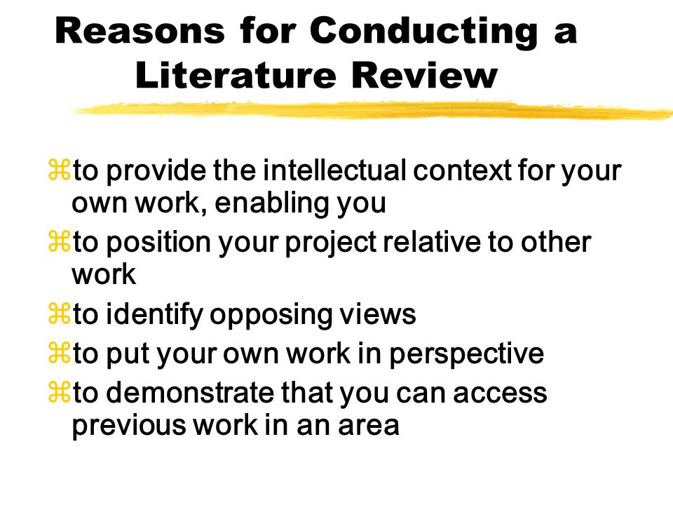 what to put in a literature review
